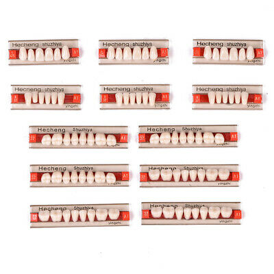3Set/84pcs Acrylic Resin Denture Teeth VITA Color Upper Lower Shade Dental A1