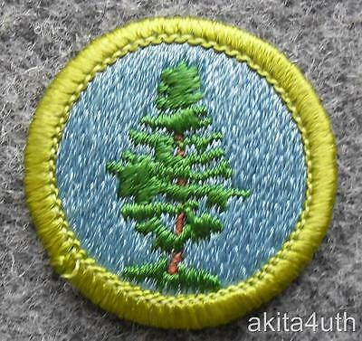 BSA Forestry Merit Badge - Type H  Boy Scout