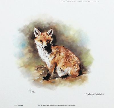 "MANDY SHEPHERD ""Red Fox"" wildlife print LTD ED SIGNED! SIZE:23cm x 24cm NEW RARE"