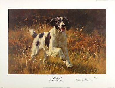 "HAYCOCK ""Black & White Springer"" spaniel dog SGD LTD ED SIZE:47cm x 63cm NEW"