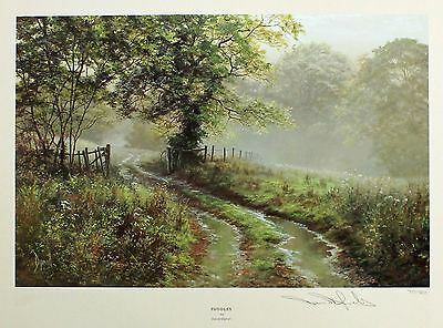 "DAVID DIPNALL ""Puddles"" country lane raining LE SIGNED! SIZE:44cm x 50cm NEW"