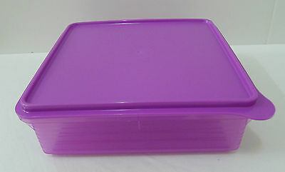 Tupperware Outdoor Storage B2B Snack Stor (2.9L) + Free Shipping
