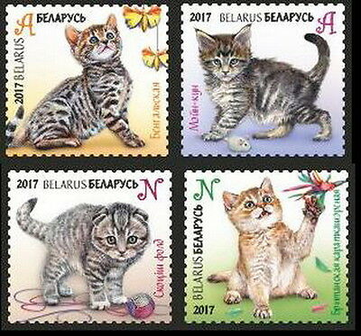 Belarus. 2017 Children philately. Kittens.