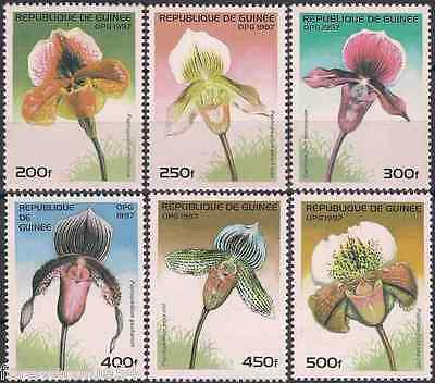 Guinea 1997 SG 1726-1731  Sc 1375-80 MNH  Orchids Flowers  combined postage