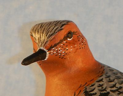 Red Knot Shorebird Decoy-Individually Hand Carved/Painted by Harold Van Dyck