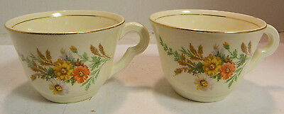 """Vintage Set of (2) Edwin Knowles Daisy Pattern Tea Cups 3.75"""" x 2.5"""" Excellent"""