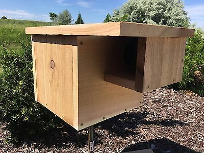 """Cedar Squirrel House Nesting Box With 3"""" Entrance And Hinged Door"""