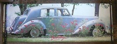 Vintage White Bentley & Roses Poster Over 6 Feet Long! Rolls Royce British