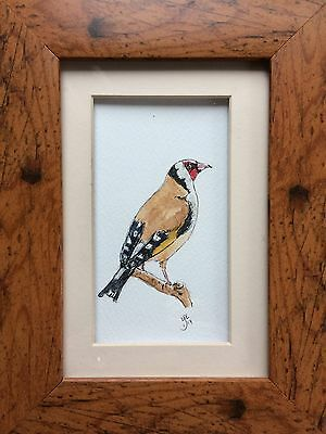 Original Framed Watercolour Painting Wildlife Goldfinch By Lisa Evans