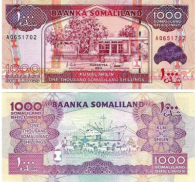 Somaliland  1000 Shillings   2011  P-20   Unc  Banknote  Africa