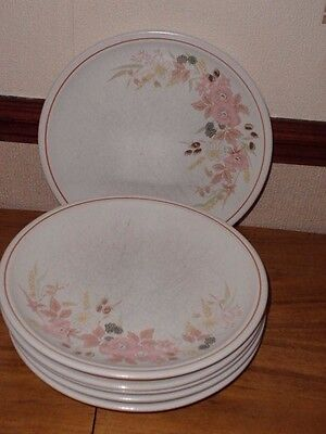6 x Boots Hedge Rose Dinner Plates