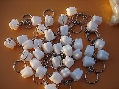 """Tooth Saver  Keychain .75"""" Lot Of 144 Carnivals, Party Toys, Favors, Vending"""