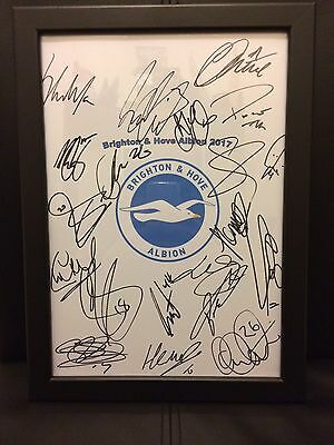 Brighton & Hove Albion FC Hand Signed Framed A4 Autograph Sheet NEW 2017