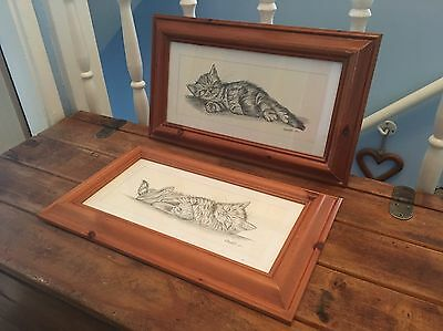 Pair Of Pine Frames With Cat Sketches Pictures Drawings