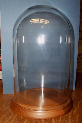 """Glass Display Dome Cloche With Solid Walnut Base By Fitzhugh Base 4.5"""" Glass 8.5"""