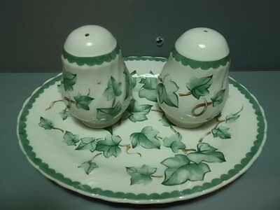British Home Stores Country Vine Salt and Pepper Pots and Small Oval Plate
