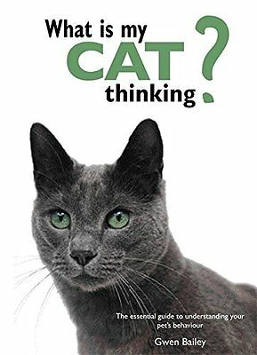 What is My Cat Thinking? by Gwen Bailey New Hardback Book