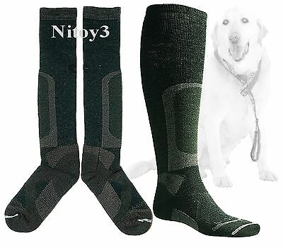 Lorpen Stalker Hunting-Cushioned-Heavyweight-Stops Odor-Over Calf Socks Large