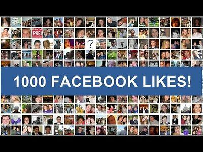 1000 Facebook Fan Page Like Real (Safe, Real, Active, Moneyback Guarantee)
