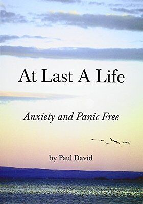 At Last a Life by Paul David New Paperback Book