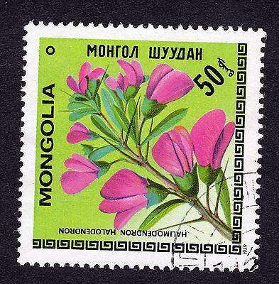 Mongolia 50m Plant Halimodendron halodendron FINE USED R28710