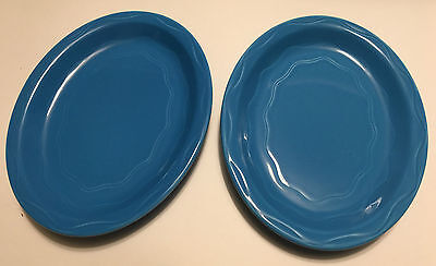 Syracuse Platter x 2 Blueberry Cantina Oval 9.5 inch 2004