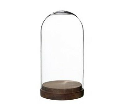 Small Glass Decorative Display Dome Stand Cloche Bell Dark Wooden Base