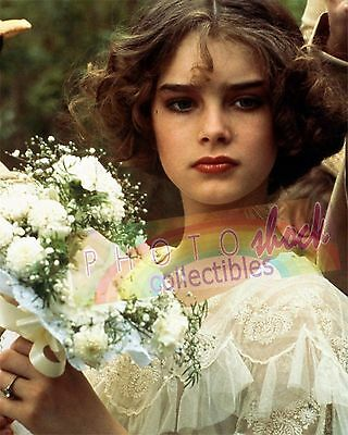 Brooke Shields actress (Blue Lagoon - Pretty baby) beautiful color photo 8X10