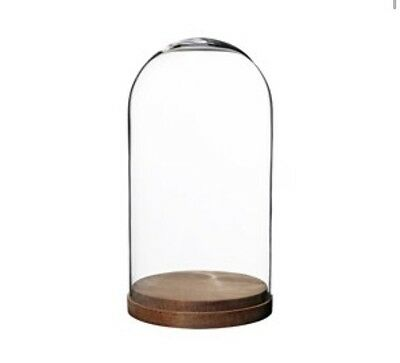 Large Glass Decorative Display Dome Stand Cloche Bell Dark Wooden Base