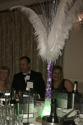 JOB LOT Ostritch feather vases 50cm LED centre pieces for party ball wedding