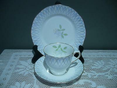 Salisbury China Lovely Vintage Floral Trio - Cup Saucer Plate -  England - Gc