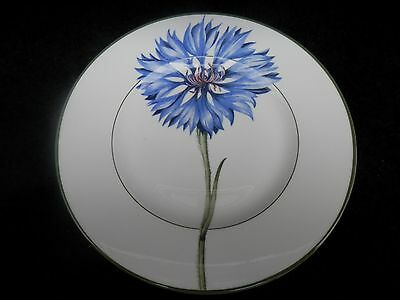 VILLEROY & BOCH Flora House & Garden Collection 8 3/8'' SALAD PLATE CORNFLOWER