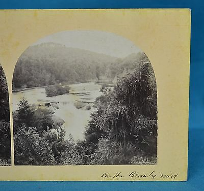 1860s Stereoview Photo On The Beauly River Scotland Francis Frith