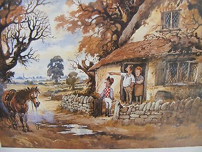 Three Thelwell prints very good condition, not faded.