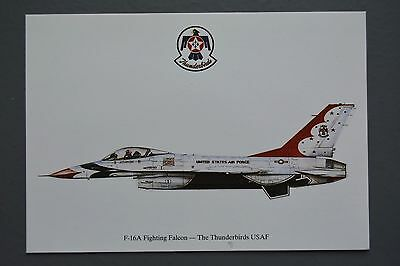 R&L Postcard: F16A Fighting Falcon The Thunderbirds USAF, Squardron Prints