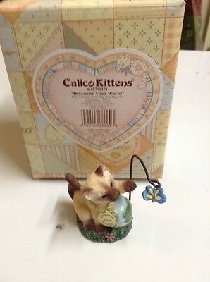 """CALICO KITTENS """"Discover Your World"""" New In Box"""