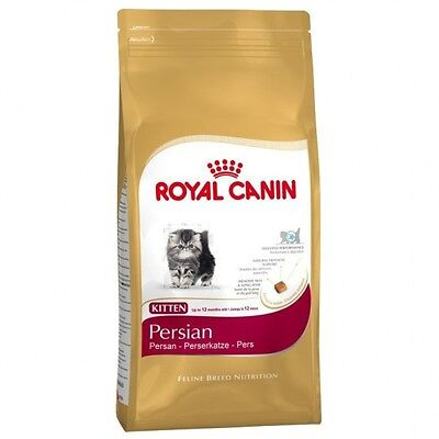Royal Canin Kitten Persian Pienso para Gatos, Comida Gatitos y Alimento Gatos