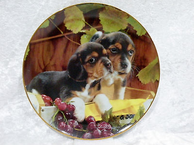 """Franklin Mint Collector Display Plate - Vintage Beagles by Larry Grant vgc 8"""""""
