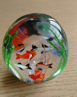 murano art glass aquarium paper weight