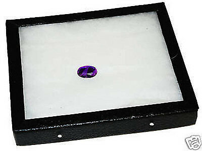 New Riker Mount Collectable Display Case With Matting