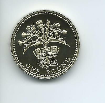 1989 Royal Mint Proof £1  taken from Royal Mint proof Set