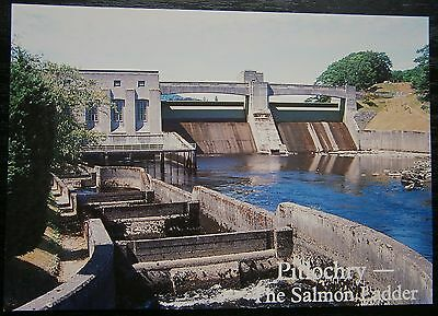 Pitlochry The Salmon Ladder Postcard Fish Pertshire