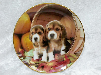 """Franklin Mint Collector Display Plate - Bushel O' Beagles by Larry Grant vgc 8"""""""