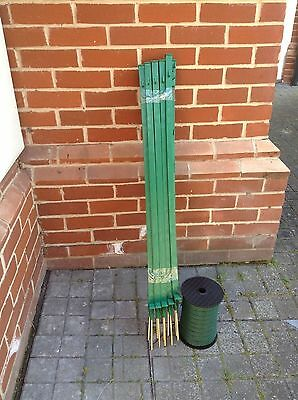 20 x GREEN 3 Ft Electric fence posts