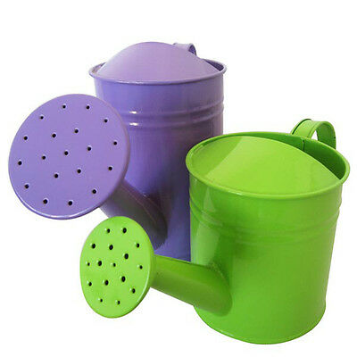 BG217 Candy Color Metal Watering Can Garden Sprayer