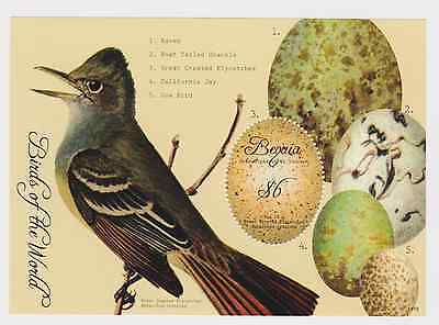 Bequia Grenadines of St Vincent - Birds of the World, 2011- 1115 S/S MNH