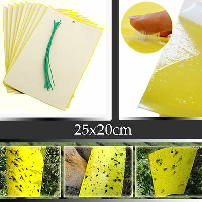 BG48 Yellow Insect Sticky Trap Whiteflies Garden Pest Control Tool 25x20cm