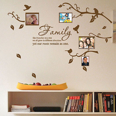 Family Tree Bird Photo Frame Nursery Art Wall Stickers Quotes Wall Decals p2