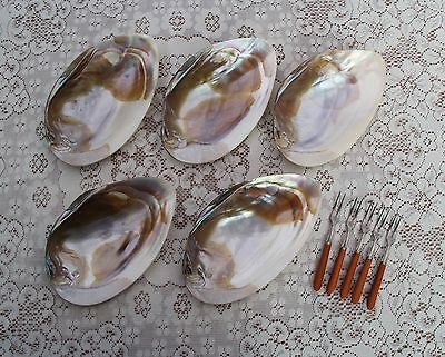 Vintage Cocktail Natural Shell Dishes with forks, Mother of Pearl, Set of 5