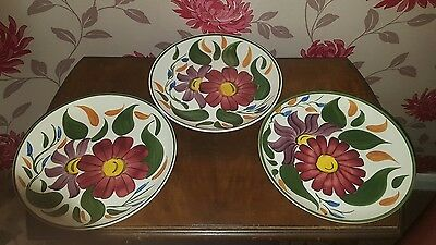 3 Wade Royal Victoria Hand Painted Plates 24 cm     (pt16)